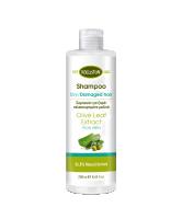 Kalliston Shampoo für trockenes / strapaziertes Haar mit Aloe 250ml